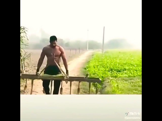 Faad Faad song    New Haryanvi WhatsApp status    Latest Haryanvi SwAGgy Status Videos
