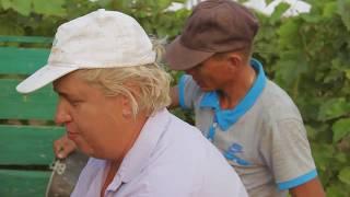 Кучугуры Голубая Бухта