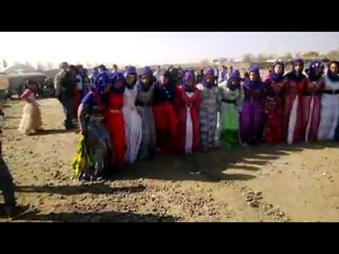 Karacadağ düğünleri
