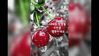 노래 옥천 아가씨   가수 황가화     한국문화예술연…