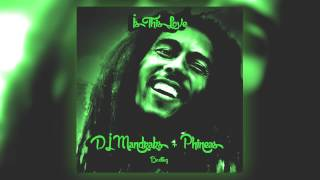 Bob Marley - Is this Love (PHiNEAS & DJ Mandraks Bootleg) *Free DL*