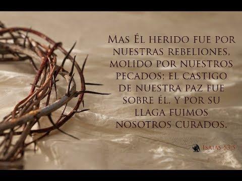 Un Recorrido Por Las Llagas De Jesús Mensaje Para El Alma Reflexión Soy Jesús David Youtube