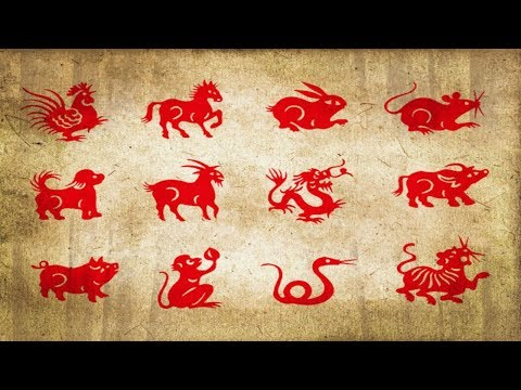 astrology:-spirit-animals-based-on-your-chinese-zodiac-sign