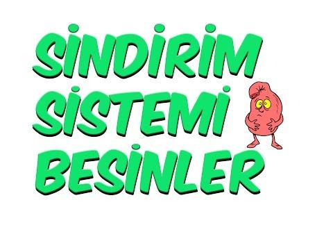 5dk'da SİNDİRİM SİSTEMİ BESİNLER | 7. Sınıf