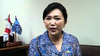 Andi Timo Pangerang, Member of Parliament, Indonesia