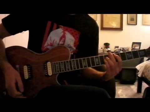 Blink 182 - Dysentery Gary Guitar Cover