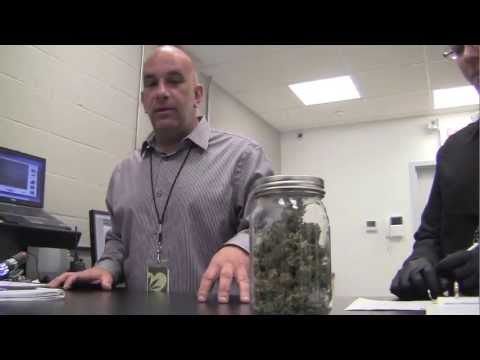 At new Providence dispensary, finding the right marijuana