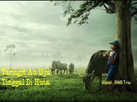 Taringat Au Uju Tinggal Di Huta (Cover Lyric) Vocal : RNB Trio Mp3