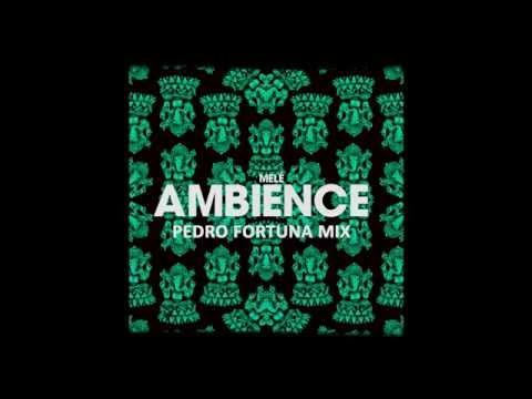 Melé - Ambience (DJ Pedro Fortuna Chords Mix)