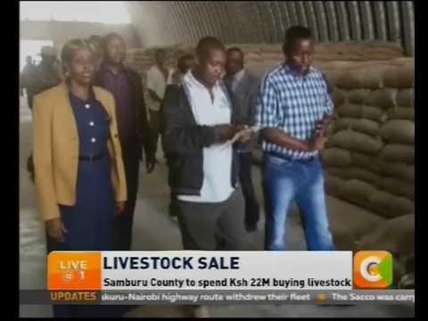 Samburu County to spend Ksh 22M buying livestock
