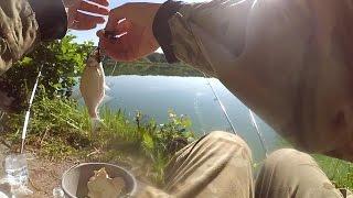 Подлещики на пенопласт. Ловля на реке Гуйва.(Всем привет! Вот небольшой видео отчетик решил запилить с последней рыбалки. В нем я отдыхал от фидера и..., 2016-06-10T17:58:20.000Z)