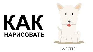 Собаки карандашом. КАК поэтапно НАРИСОВАТЬ СОБАКУ(Как нарисовать собаку поэтапно карандашом для начинающих за короткий промежуток времени. http://youtu.be/TfpBQySyIyE..., 2015-06-25T08:57:57.000Z)