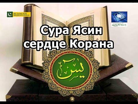 Сура Ясин это сердце Корана | Чтение на арабском.