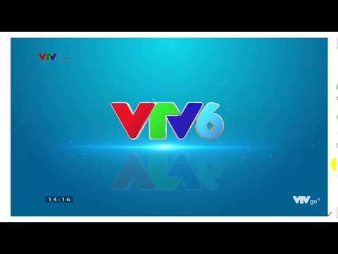 Xem trực tiếp bóng đá kênh VTV6