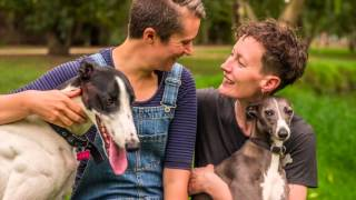 Wilbur + George | The Whippet and the Greyhound | Ragamuffin Pet Photography