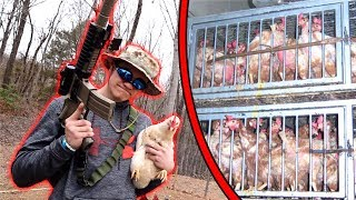 I RESCUED P.O.W. CHICKENS! *Hostage Situation*