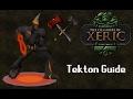 OSRS Raid Guides - Tekton