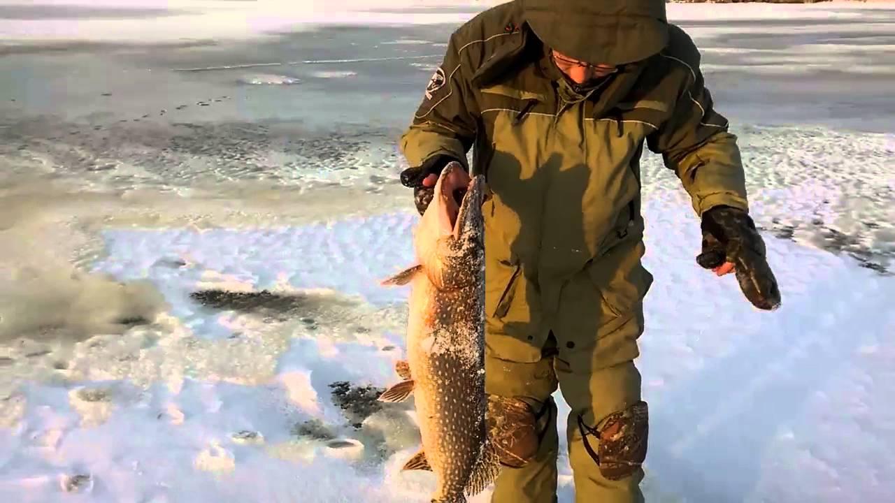 Прогноз клева рыбы в кемеровской области крапивино