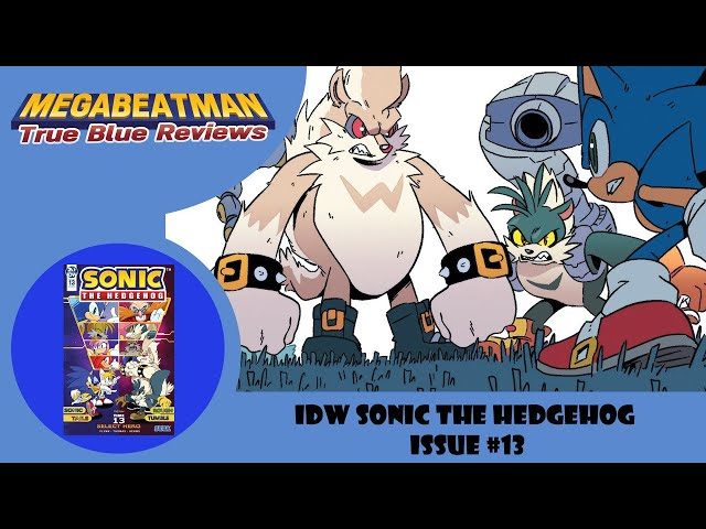Idw Sonic The Hedgehog 13 A Comic Review By Megabeatman Youtube