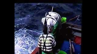 Pole fishing for tuna