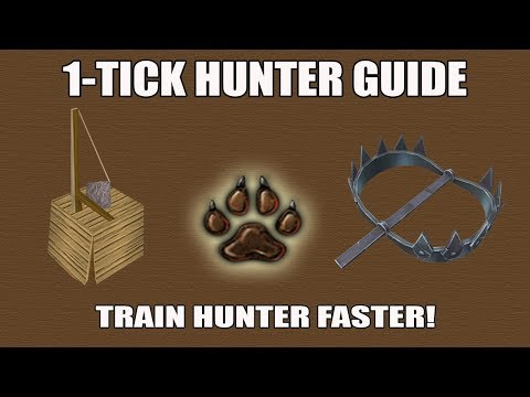 [Runescape 3] How To 1-Tick A Trap For Hunter Training [OUTDATED]