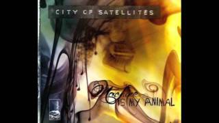 City of Satellites - Skeletons