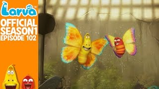 official wild wild world 1 - larva season 1 episode 102