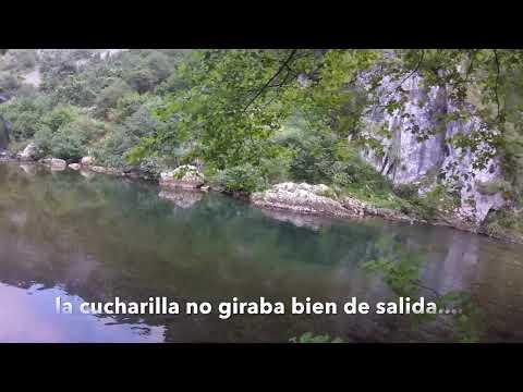 Pesca a cucharilla ataque de reo y trucha a la vez en el río Deva