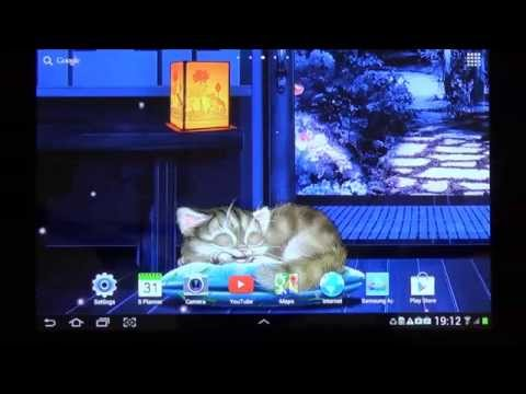 Sleepy Cat Live Wallpaper for Android phones and tablets
