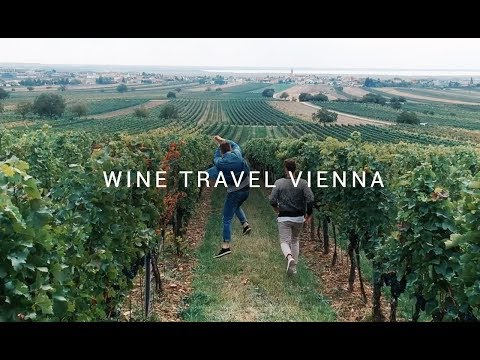 Wine Travel in Vienna - Spotlife meets Aldi Süd #meineweinwelt