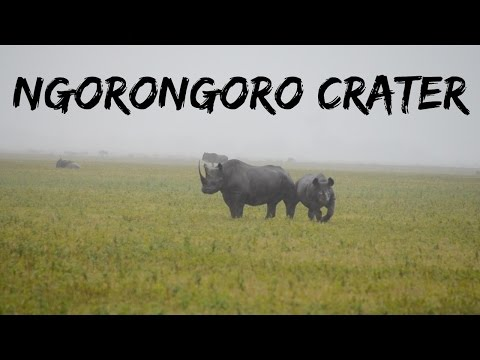 Ngorongoro Crater | Tanzania Safari Travel Diary Day 6 | Ali Coultas