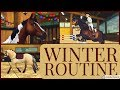 My Horse Winter Routine Show Jumping Lunging Horse Care More Star Stable Realistic Roleplay mp3