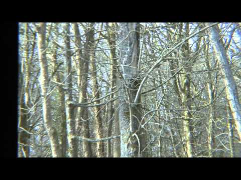 Clowance Estate - Seasons Holidays