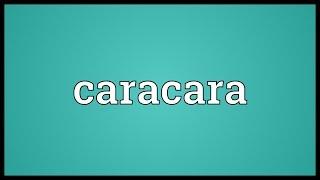 Caracara Meaning
