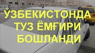 ЎЗБЕКИСТОНГА ТУЗ ЁМҒИРИ КИРИБ КЕЛДИ