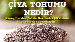 Chia Tohumu nedir? Faydaları nelerdir?