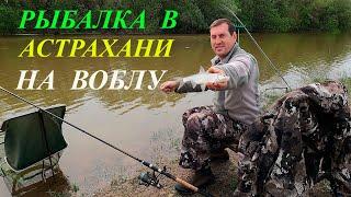 Рыбалка в Астрахани ВОБЛА ЛЕЩ КАРАСЬ