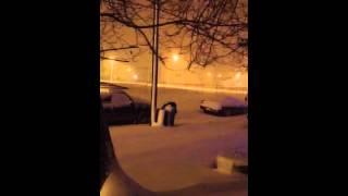 2012 snow storm in Cairo il