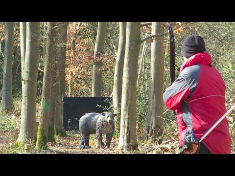 Company of 60 Field Archery 3D Shoot