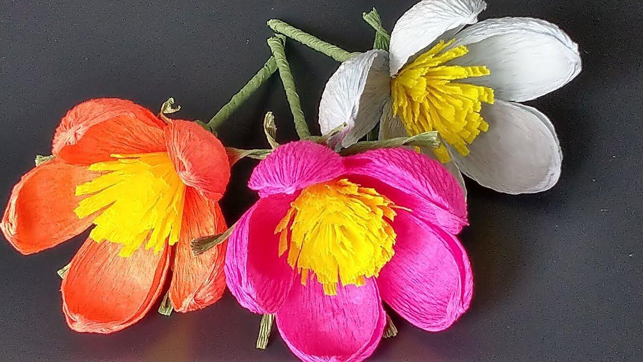 Jak Krok Po Kroku Zrobic Proste Kwiaty Z Krepiny Easy Crepe Paper Flower Tutorial Youtube