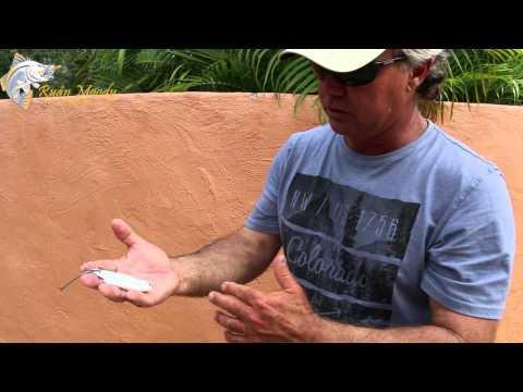 Barra Fishing Tips; Rigging live mullet for barramundi