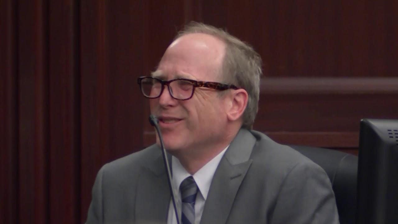 Full Michael Haim testimony