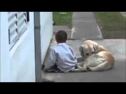 garotinho-com-síndrome-de-down-e-seu-cachorro