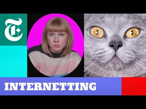 Cats vs. Dogs: Who Rules the Internet?   Internetting Season 2