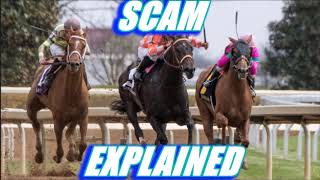 Horse Race Betting Scam Explained - Bruce Williams