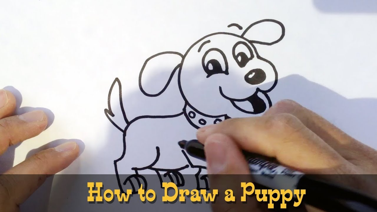 How To Draw A Dog Cartooning  Kids