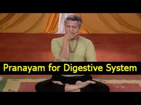 pranayama  yoga exercises for digestive system  english