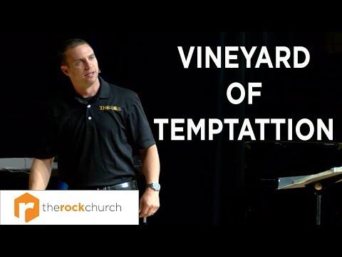 """Vineyard of Temptation"" from the ""Samson"" series Wes Morris"