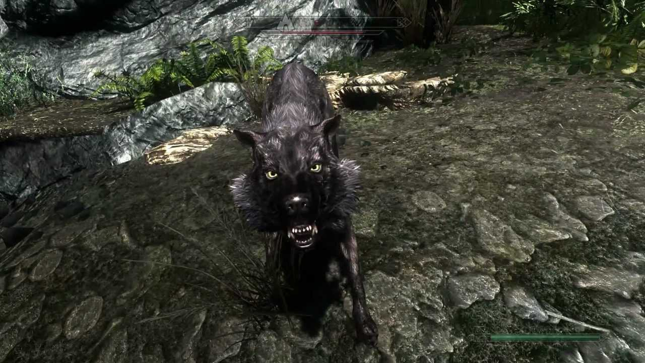 skyrim how to stop being a werewolf