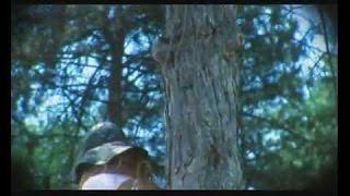 Karolina Goceva, Garo & Brothers Tavitjan - Dafino vino crveno (official video)